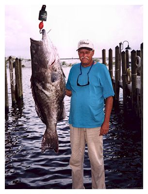 68.8 pounds of super duper grouper