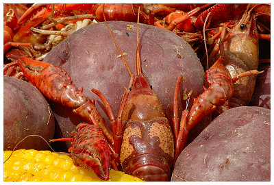Crawfish boil...  Yummy...