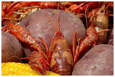 Crawfish boil...  Yummy...